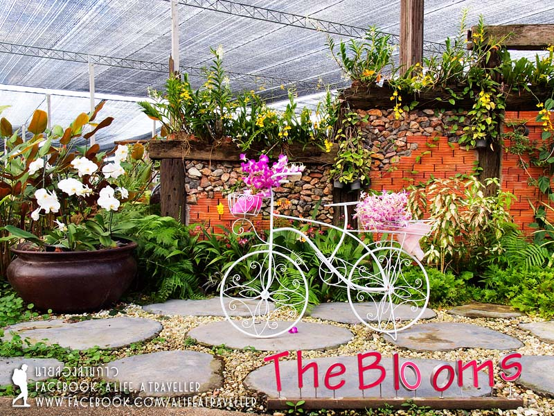 The Blooms Orchid Park Ratchaburi401