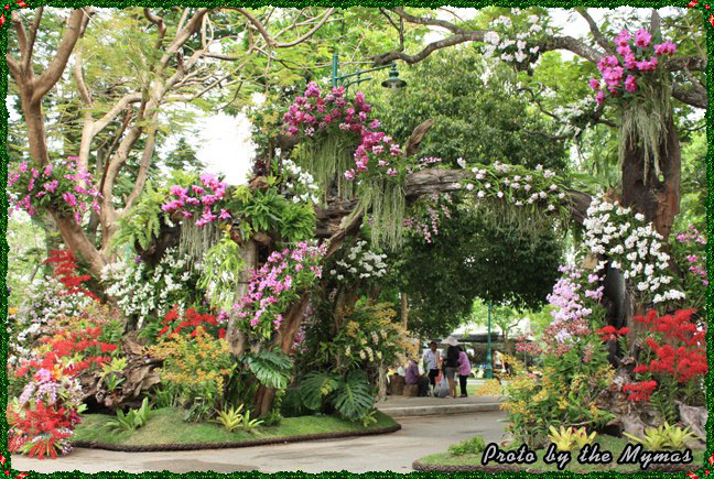 The Blooms Orchid Park Ratchaburi403